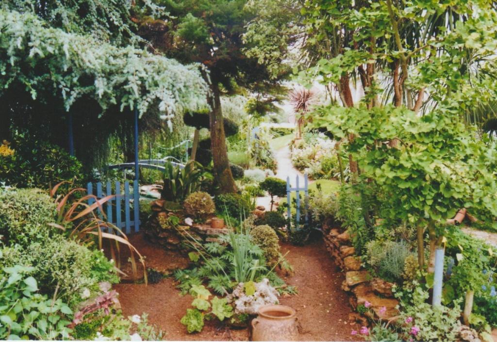 Michou - un jardin de curiosités, botanique - L'oasis de Michel  (44) - Page 6 Numzo347
