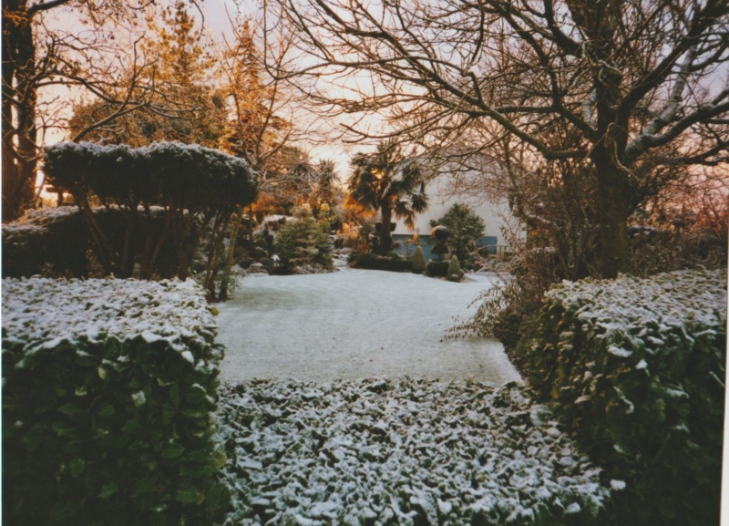Michou - un jardin de curiosités, botanique, le moulin, l'oasis de Michel  (44) Numzor30