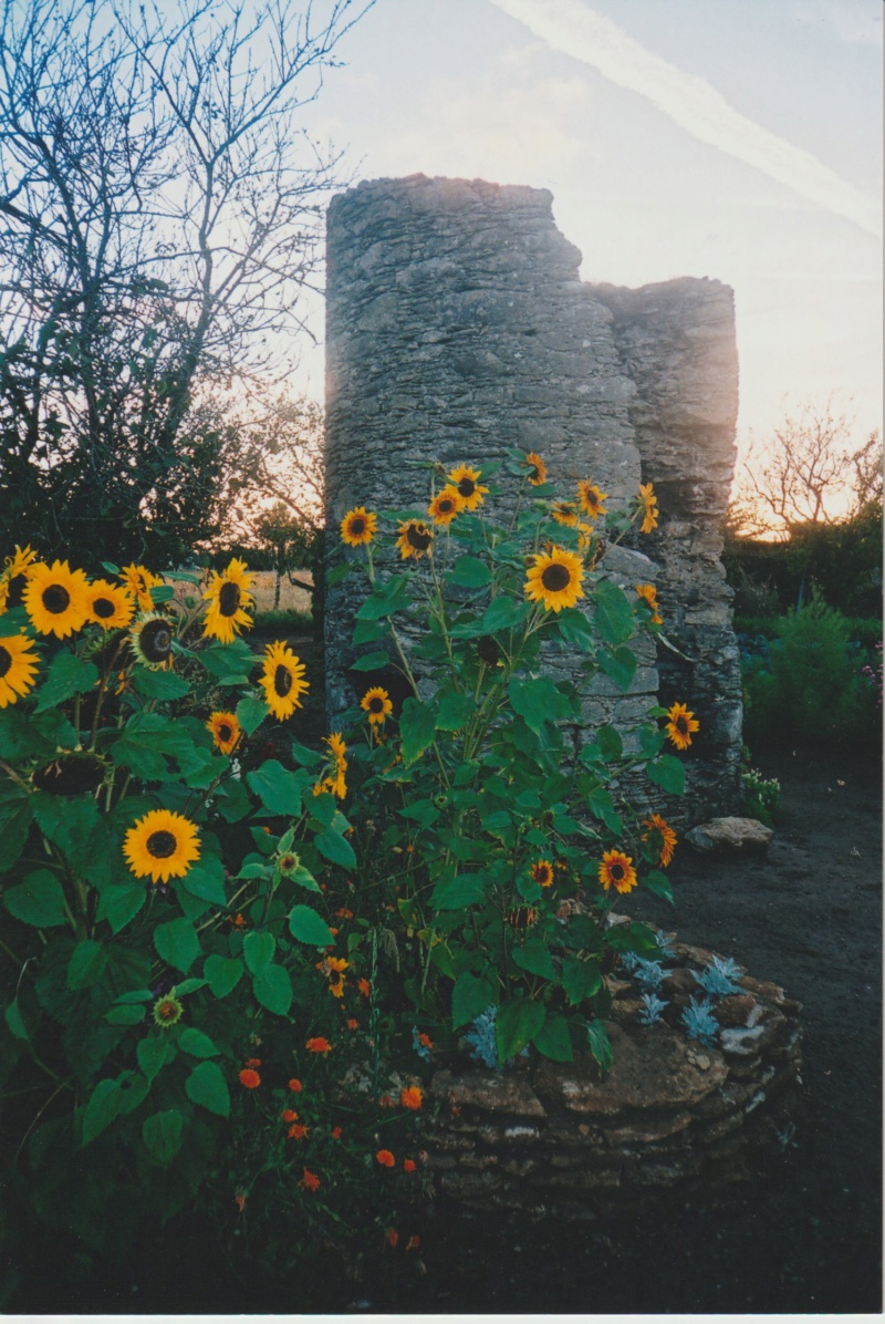 Michou - un jardin de curiosités, botanique, le moulin, l'oasis de Michel  (44) Numzor62