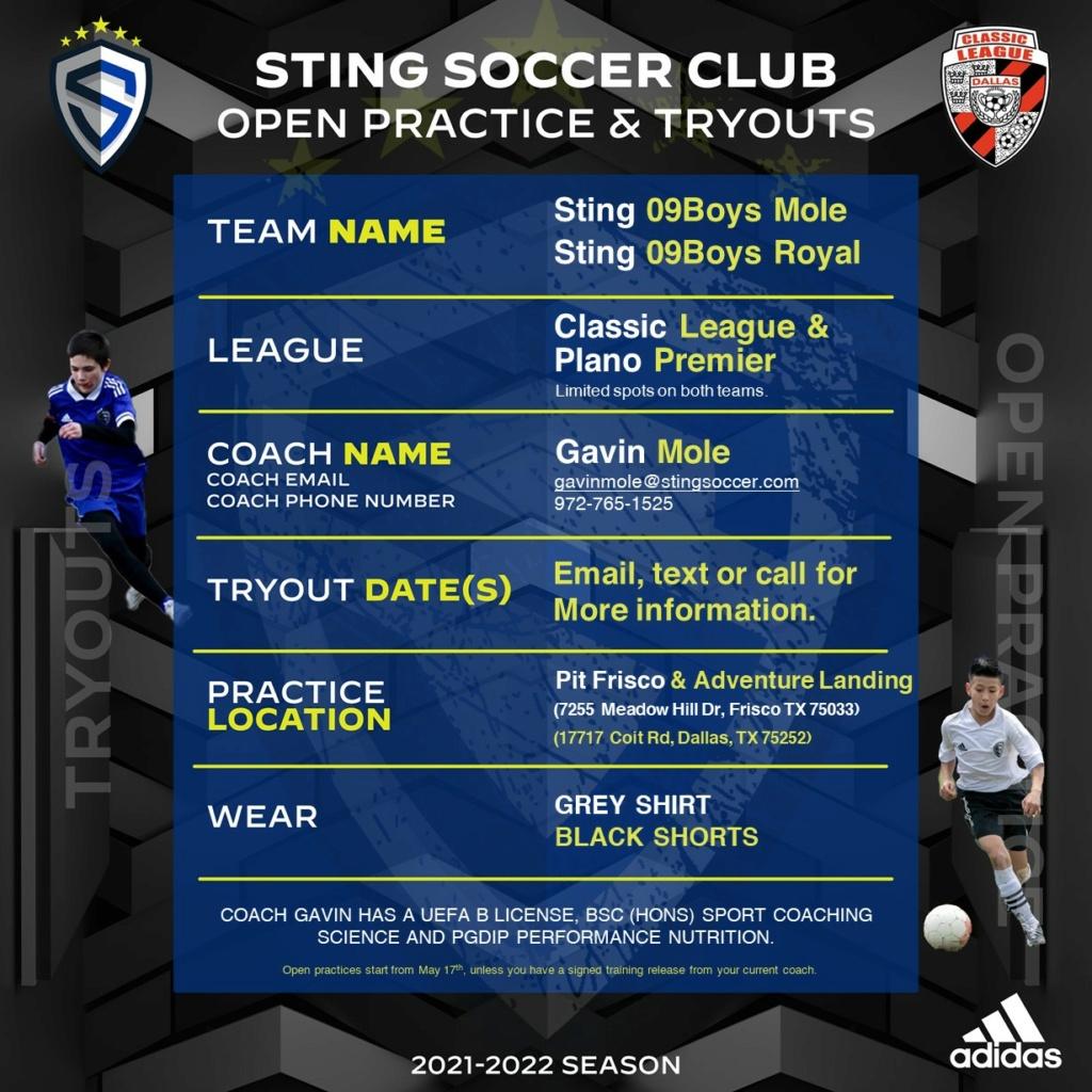2x Sting 09 boys Mole (Classic & Plano) Sting_10
