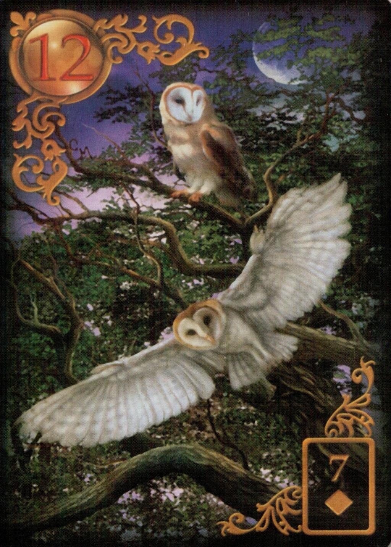 Золотые мечты Ленорман (Расширенное издание) | Gilded Reverie Lenormand. Галерея.  12_aao10