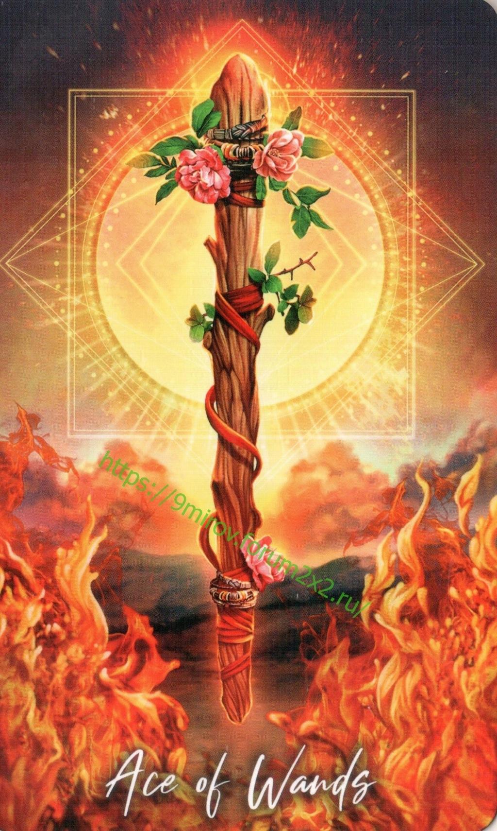 """Таро """"Мудрость элементалей"""" The Elemental Wisdom Tarot (галерея) 5fbd3312"""