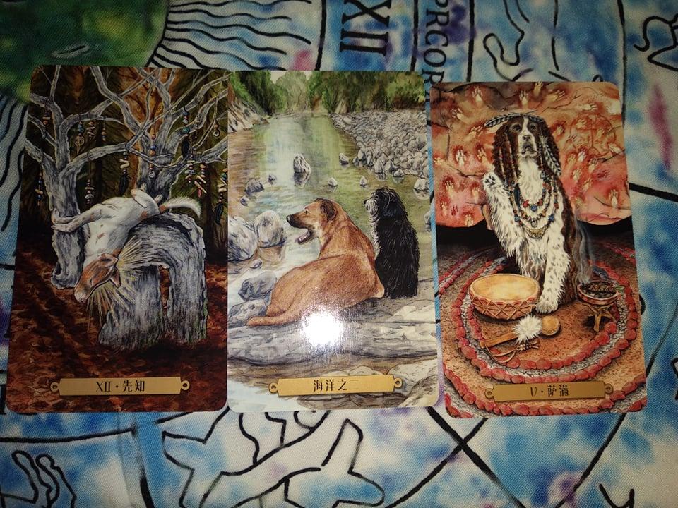 Акция на Таро Мистических Кошек и Собак) - Страница 5 80478910