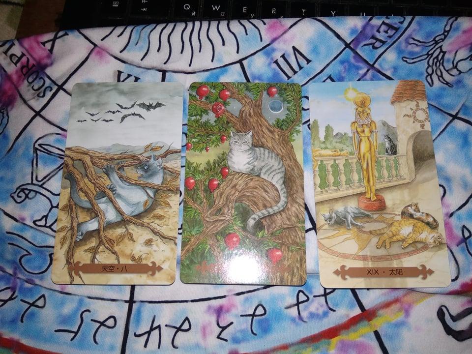 Акция на Таро Мистических Кошек и Собак) - Страница 5 81389110