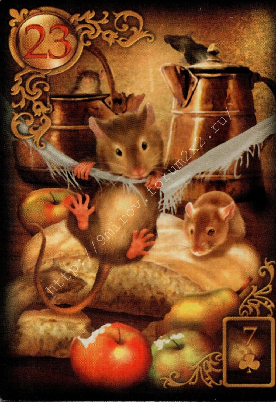 Золотые мечты Ленорман (Расширенное издание) | Gilded Reverie Lenormand. Галерея.  Water117