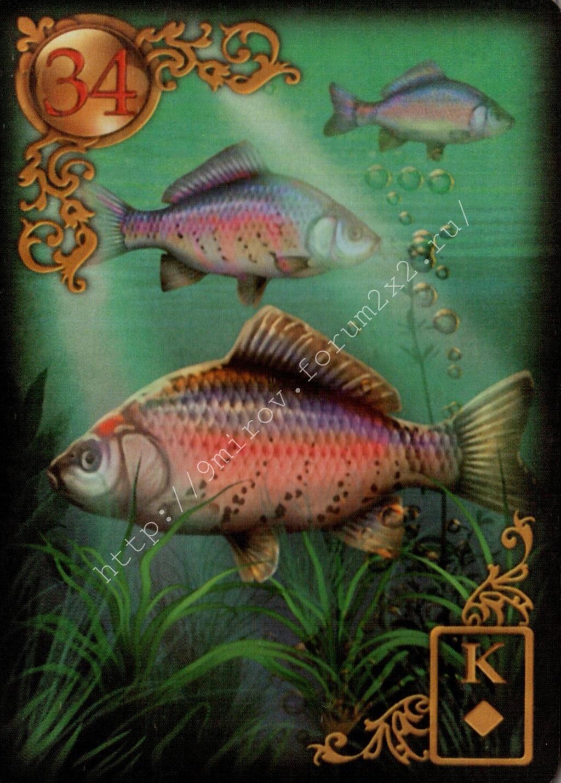 Золотые мечты Ленорман (Расширенное издание) | Gilded Reverie Lenormand. Галерея.  Water127