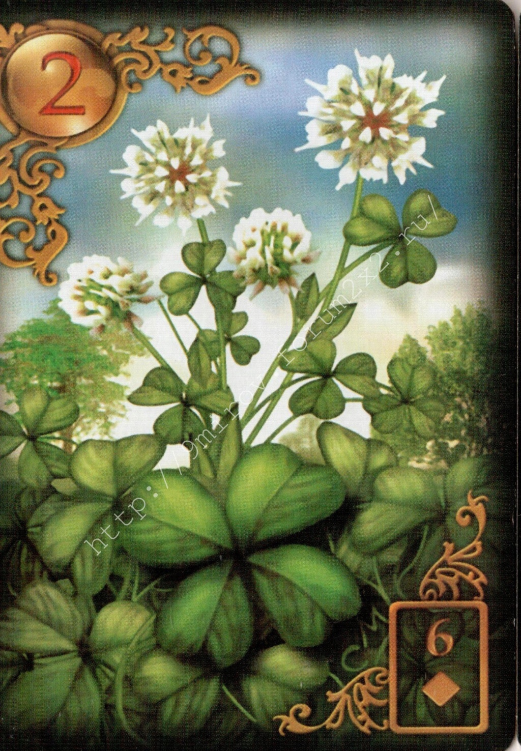 Золотые мечты Ленорман (Расширенное издание) | Gilded Reverie Lenormand. Галерея.  Waterm98