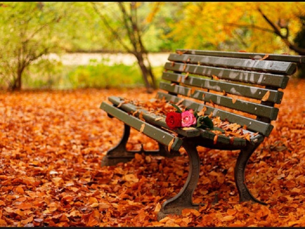 AUTUNNO Autumn10