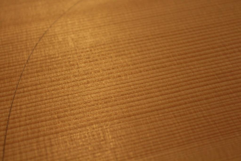 la classe des bois  12306410