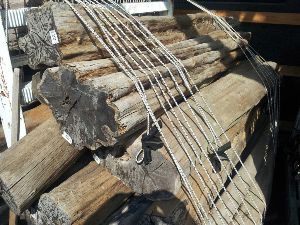Au sujet des bois... et la raison pour laquelle certaines essences sont si dispendieuses Abw_lo11