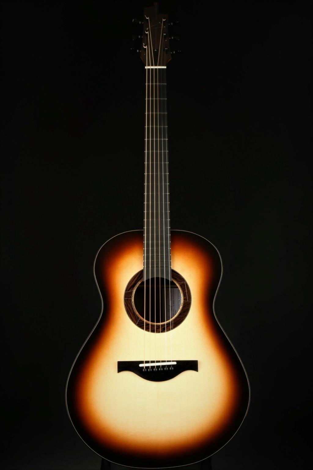 2021: 8 guitares pour la Red House - Page 2 Paldac10