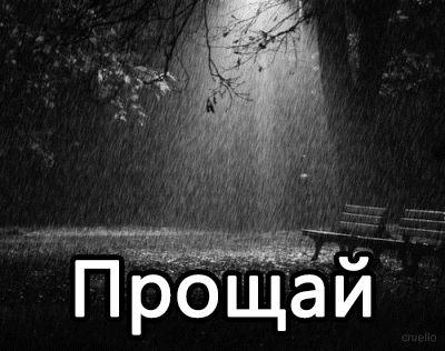 Прощай )( стих. Prosch10