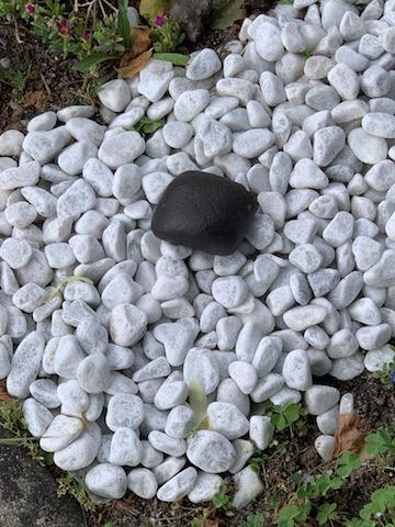 Ma deuxième météorite! Img_2216