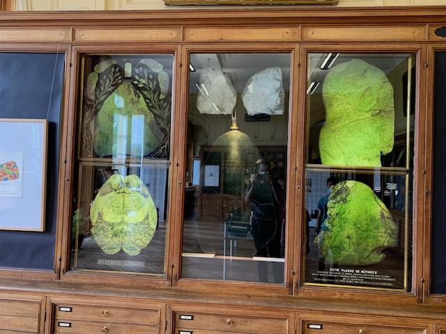 J'ai fais le musée de Minéralogie à Paris Img_2712