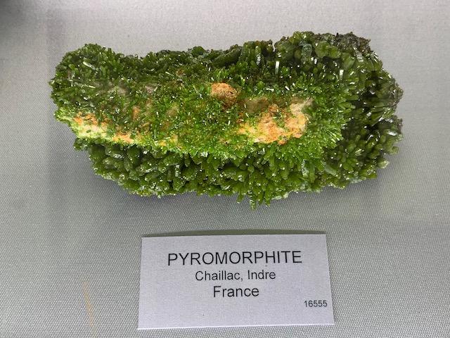 J'ai fais le musée de Minéralogie à Paris Img_2912