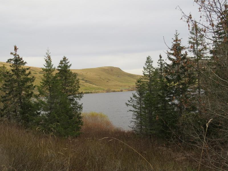Chadka et Yocco au Lac du Guéry 04_lac10