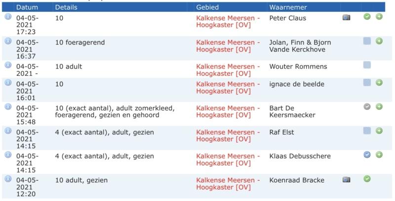 Koereiger E082b810