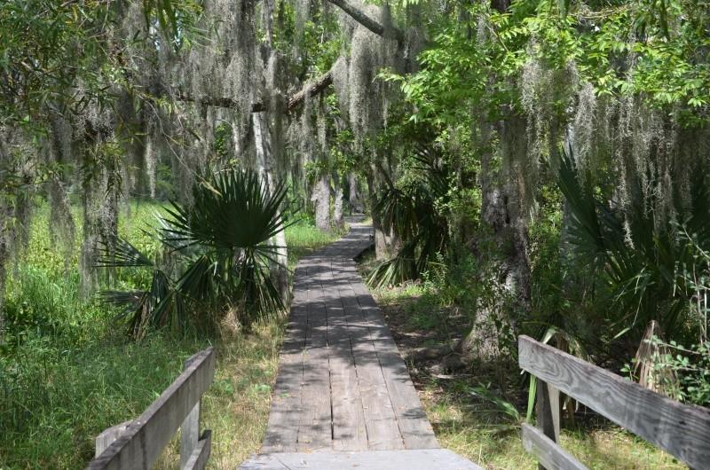 """7 États du Sud des USA - 5000 Km - 25 jours : """"De Miami à New Orleans via Atlanta"""" - Page 11 Dsc_0918"""