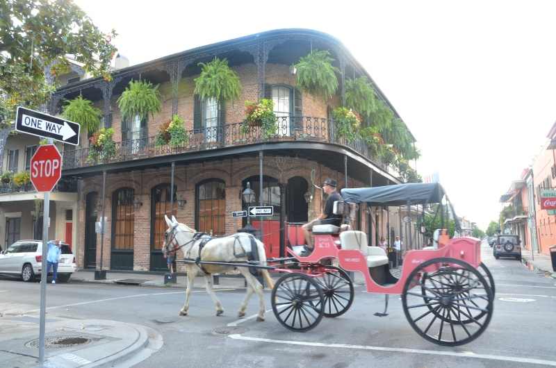 """7 États du Sud des USA - 5000 Km - 25 jours : """"De Miami à New Orleans via Atlanta"""" - Page 12 Dsc_0935"""