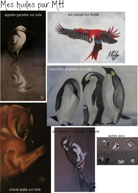 Vous ai-je déjà dit que j'aimais peindre, dessiner, photographier? =P Huiles10