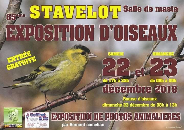 Exposition de Stavelot les 22 et 23 décembre 2018 Fb_img10
