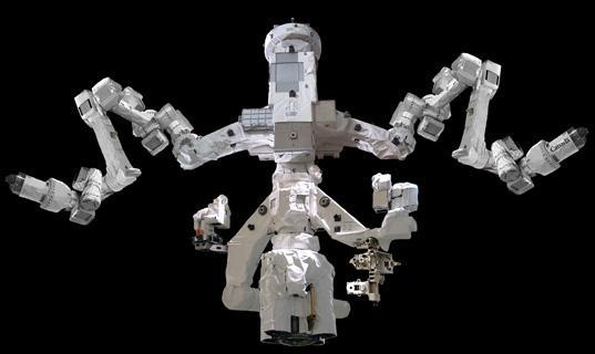 """Le """"Robonaute"""" de la NASA - Page 5 Dextre10"""