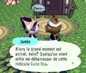 Animal Crossing Ancrgc11