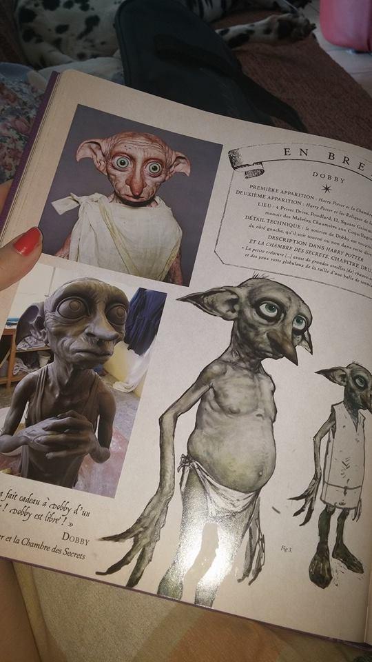 Nouveaux livres sur l'univers HP ? - Page 4 14613810
