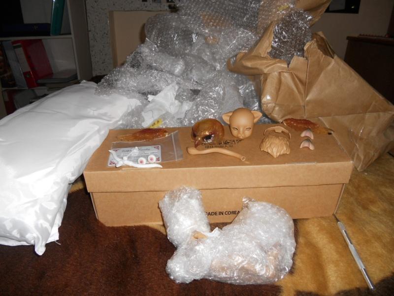Nouvelles dolls : DimAria, LTF Ante et Lishe :) Dscn3911