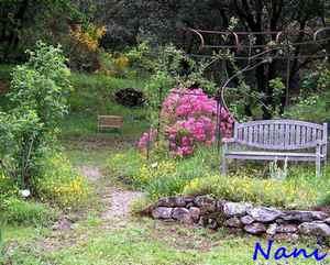 42 - La pierre, le bois, le fer... au jardin...  Le vote - Page 3 2nani10