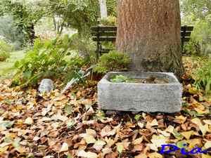 42 - La pierre, le bois, le fer... au jardin...  Le vote - Page 3 3_dia10