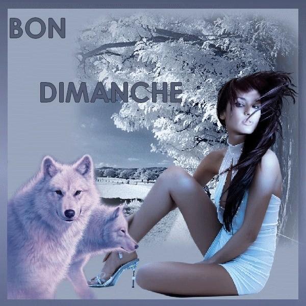 DIMANCHE 30/11/2014 IDEM 29312811
