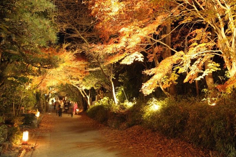 Kyoto - Japon : l'étonnante fête des lumières d'Arashiyama 110
