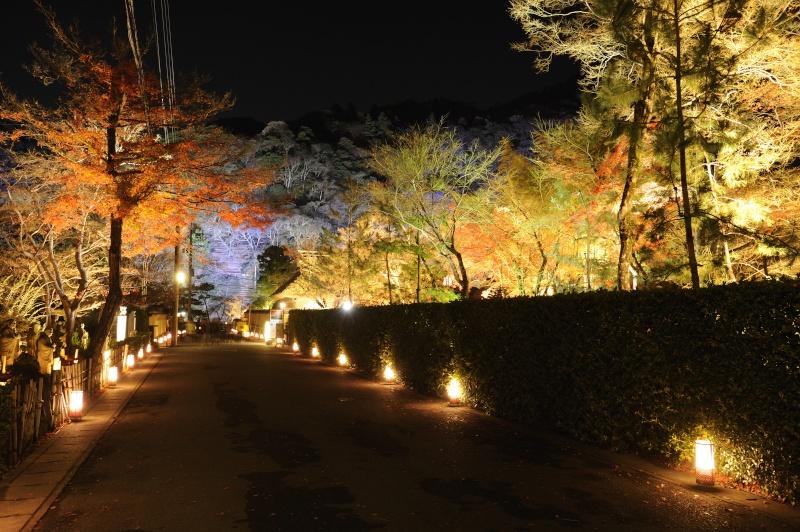 Kyoto - Japon : l'étonnante fête des lumières d'Arashiyama 210