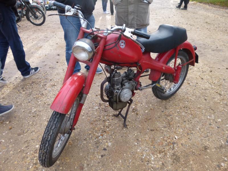 MOTOM  P1030713