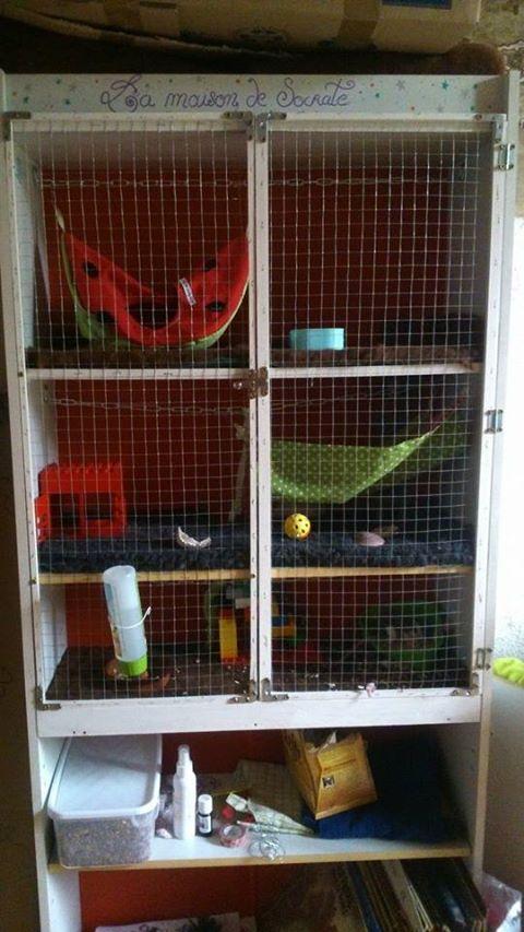 Vends cage faîte maison pour 2 rats ! 10600610