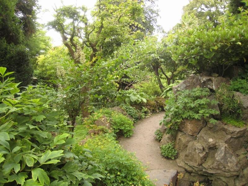 Japanese Garden - prox. Dublin (Irlande) Japane14