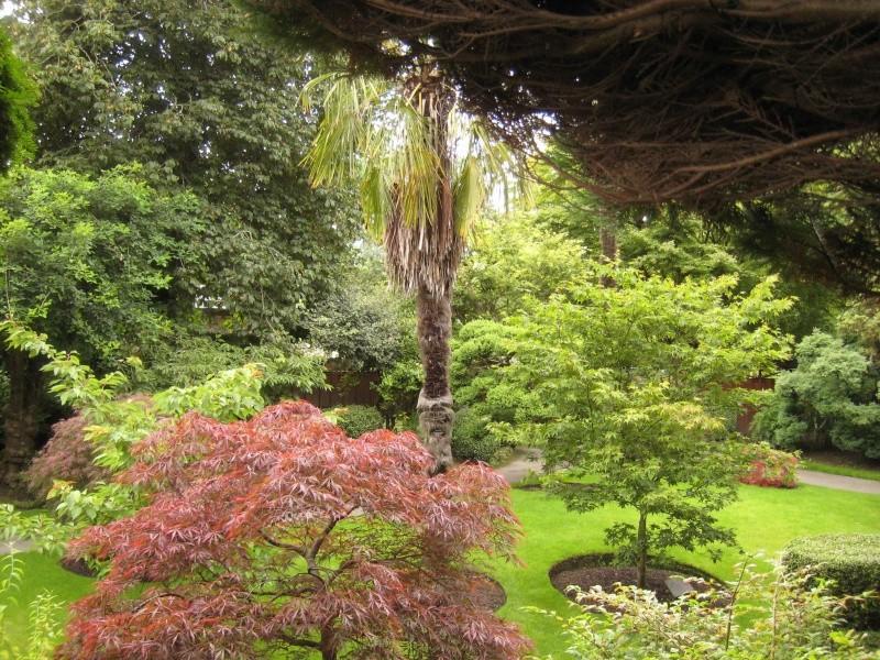 Japanese Garden - prox. Dublin (Irlande) Japane16