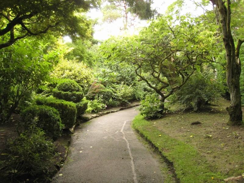 Japanese Garden - prox. Dublin (Irlande) Japane18