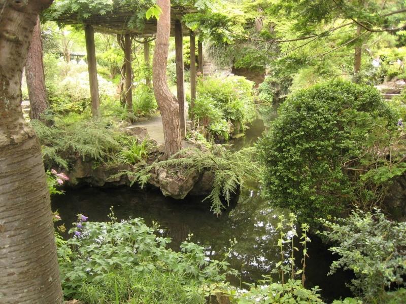 Japanese Garden - prox. Dublin (Irlande) Japane20
