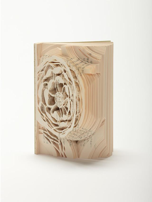 [Art] Livres objets-Livres d'artistes - Page 7 A45