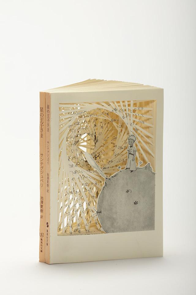 [Art] Livres objets-Livres d'artistes - Page 7 A50