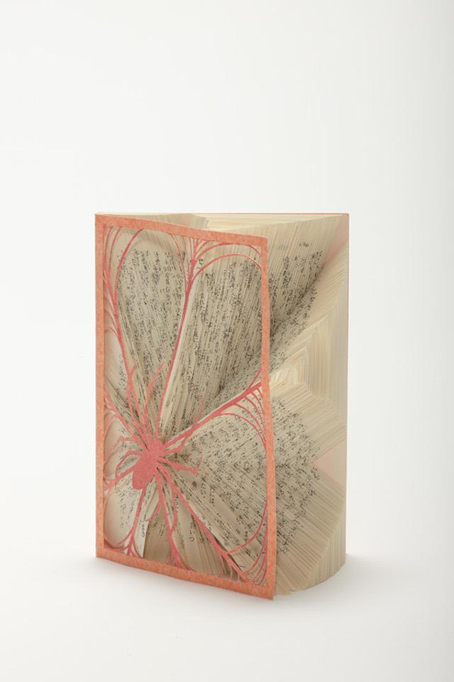 [Art] Livres objets-Livres d'artistes - Page 7 A51