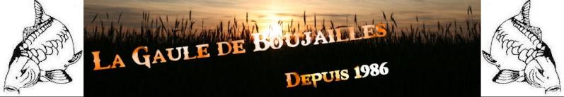 Gaule de Boujailles