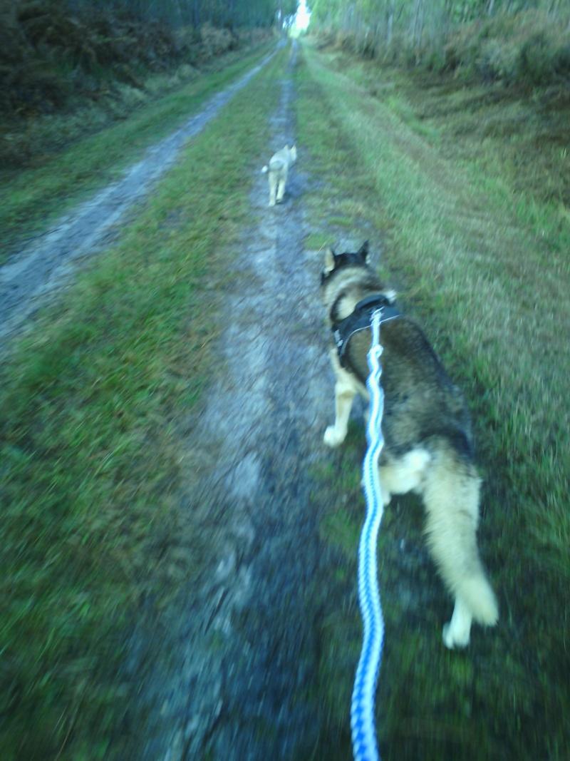 Enjoy your run! Oct20110