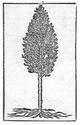 MONNAIES DE LEGENDES (EMBLEMISTE) - Page 29 1_alci16