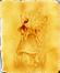 CouLoir des GaLeRies - (Nous, Events, Anniversaires, Donjons, Avis de Recherche, Emotes, Dofus, Titres et Ornements)