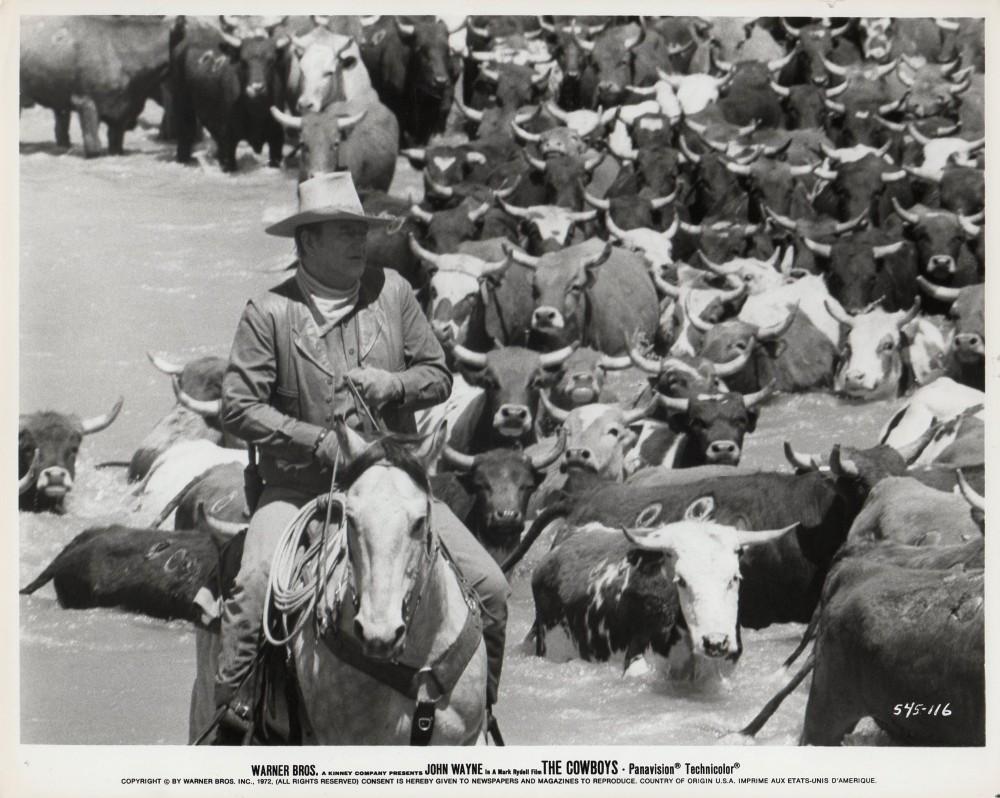 Les cowboys - The Cowboys - 1972 - Page 3 A_wayn31
