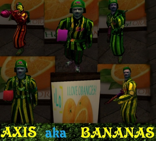 Server Skins Axis11