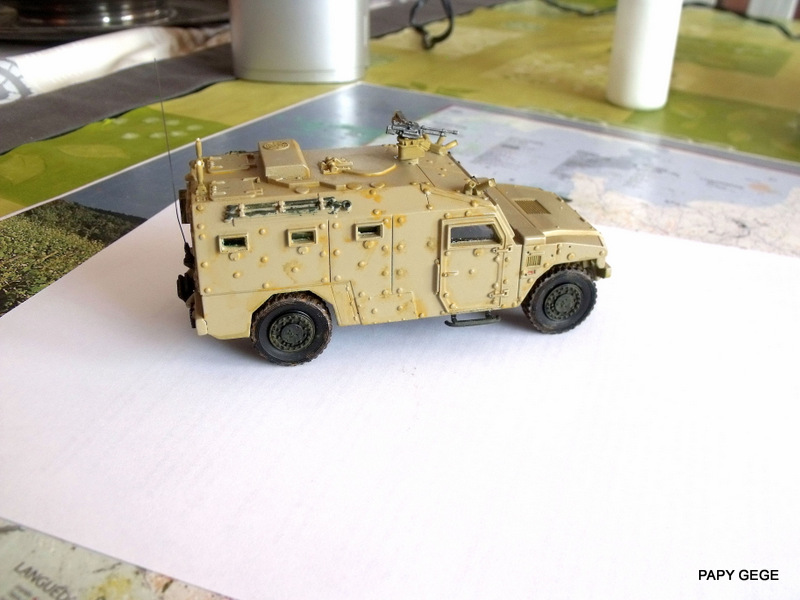 Sherpa Light Wasp 1/48 Gasoline. Sherli26